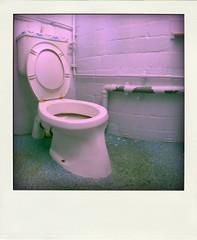 Die Toilette des Grauens ...