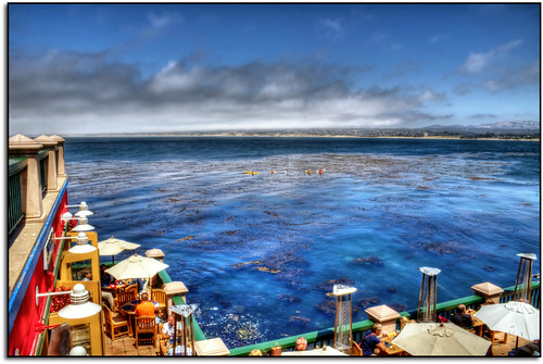 california feast monterey montereybay legacy 2012 tistheseason swp forgottentreasures musicphoto scrapping61 awardtree covertpainters daarklands sailsevenseas trolledproud exoticimage pinnaclephotography modernsclassics digitalartscene