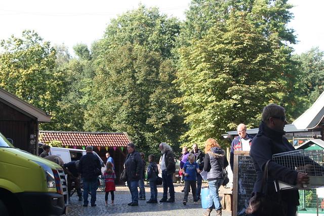 Dierendag-Kinderboerderij_Heino (2)