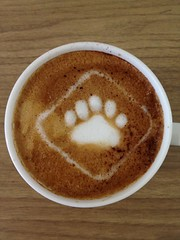 Today's latte, SmartBear.