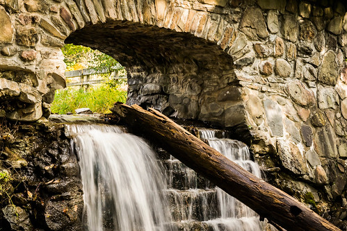new york bridge tree water stone waterfall log nikon f28 d3100