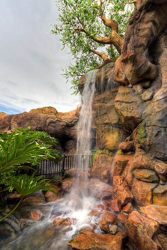 life tree animal waterfall unitedstates florida path kingdom disney wdw kissimmee hdr pathway