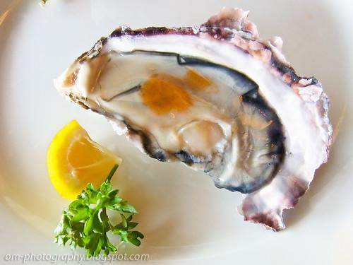 fresh oysters R0019065 copy