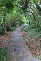 牛寮埔登山步道