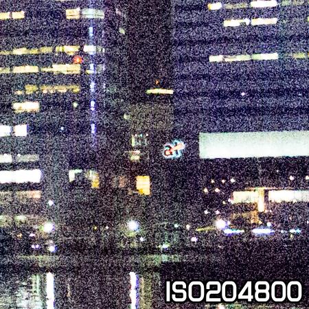 EOS1DX#50