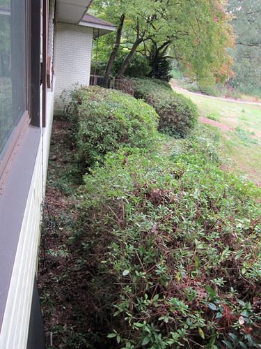 hedging...