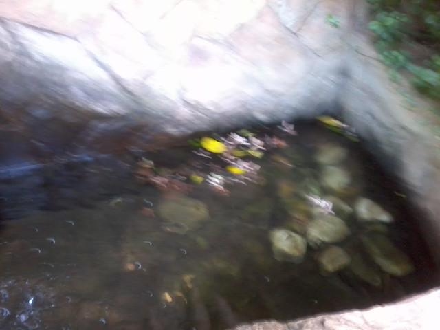 Header of cachoeira