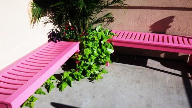 HBM! PINK BENCHES OUTSIDE CALIFORNIA GRILL