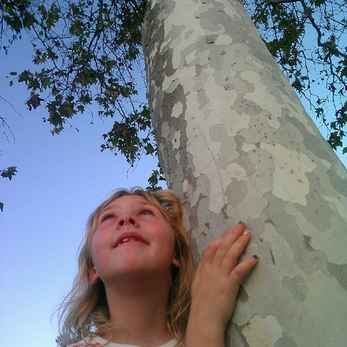 "She hugged a random tree and said, ""It's so good to be home!"""