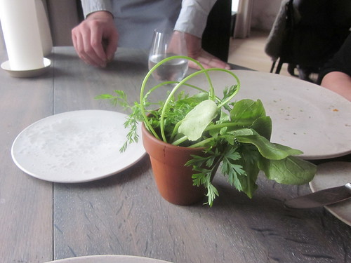 "Noma - Copenhagen - August 2012 - Radish, ""Soil"" and ""Grass"""