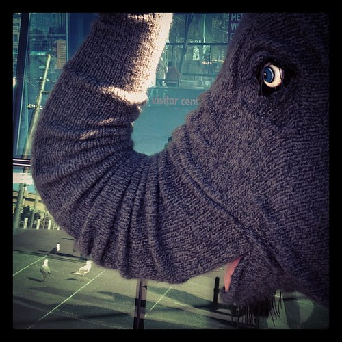 Knitted elephant