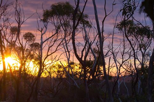 sunset australia southaustralia marblehill