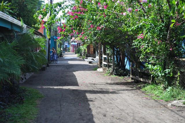 Calle principal de Tortuguero, donde podemos encontrar tiendas, negocios, alojamiento, viviendas, una iglesia y un puesto de policía, donde es posible ver al policía dormir incluso de su propia moto ... la vida es muy tranquila y pacífica en Tortuguero. Tortuguero - 7950153226 c91d833a01 z - Tortuguero, entre la tranquilidad y la vida salvaje