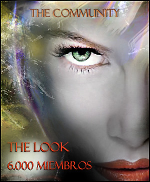 The look 6000