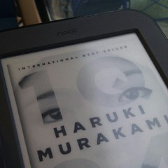 enjoying my new Nook Simple Touch ereader
