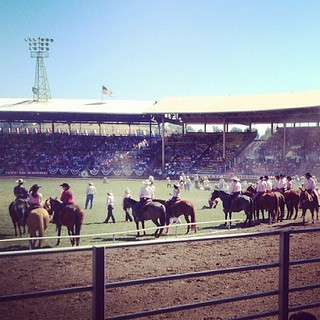 Let 'er Buck! #Pendleton #Round-Up