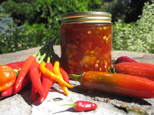Chile Pepper Sambal