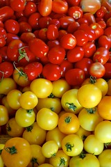 Fête de la Tomate 2012 à Guémappe