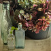 Bottles and Blooms by FireflyFotos