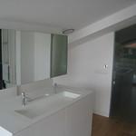 Puerta con vidrio Dark Grey y lavabo en Clear White