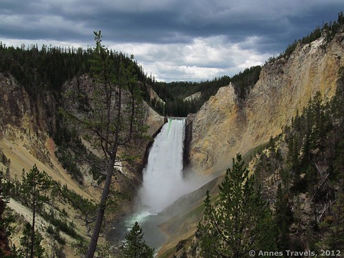 Lower Yellowstone Falls, seen from Red Rock Point, Yellowstone National Park, Wyoming