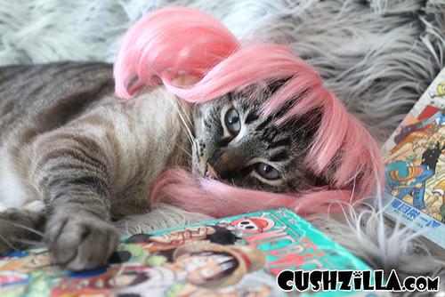 cushzilla-anime-dog-wig-cat-wig-125-02