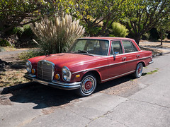 performance car(0.0), mercedes-benz w114(0.0), convertible(0.0), automobile(1.0), automotive exterior(1.0), executive car(1.0), vehicle(1.0), mercedes-benz w108(1.0), mercedes-benz(1.0), compact car(1.0), mercedes-benz w111(1.0), antique car(1.0), sedan(1.0), classic car(1.0), vintage car(1.0), land vehicle(1.0), luxury vehicle(1.0),