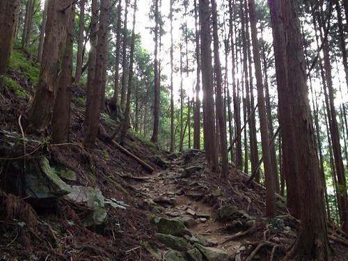 金剛山登山(高天彦神社から)-16