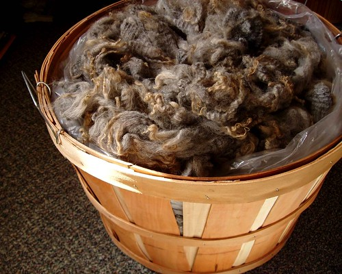 bushel o' wool