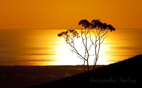 sunset silhouette nikon explore adelaide d200 adelaidehills