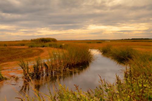 autumn ma day pentax cloudy massachusetts saltmarsh newburyport plumisland k7