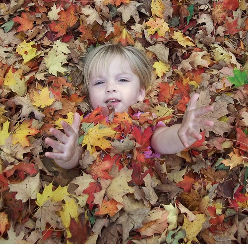 Buried in the leaves and reanimating like a zombie!