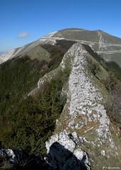 Monte Catria (Marche)