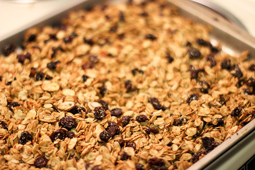 Homemade Granola by Jeni Baker