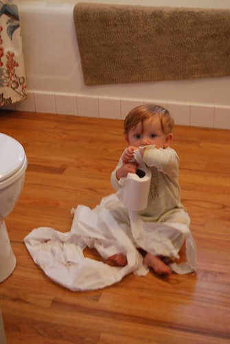 Toilet Paper Imp