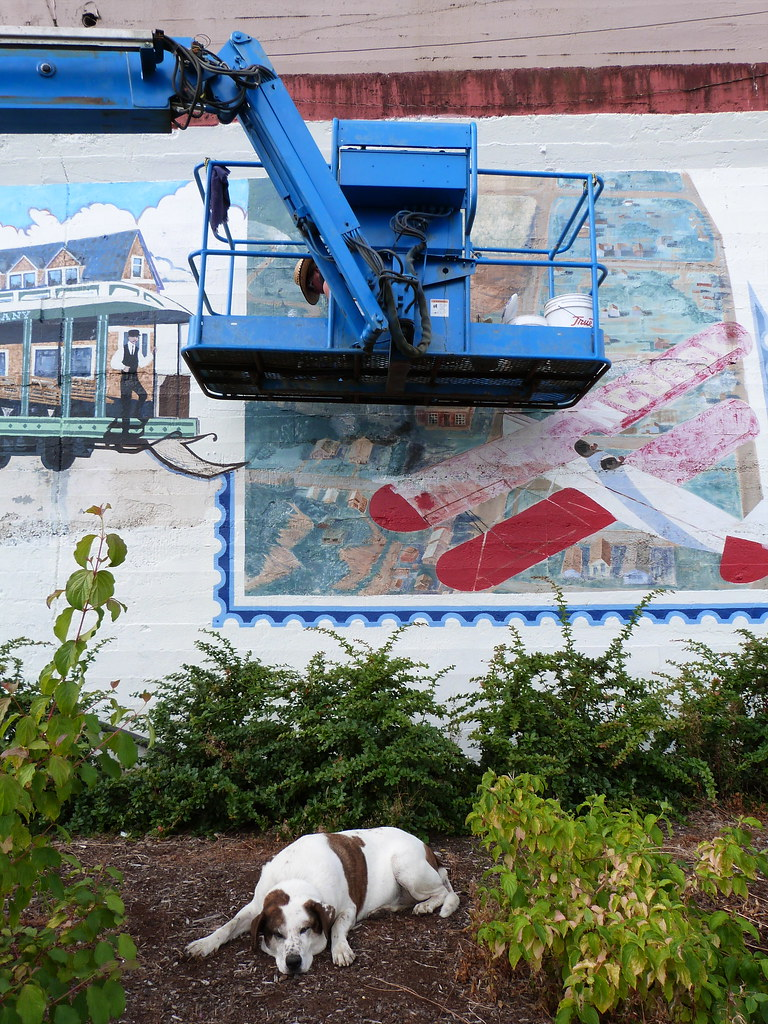 Grandma Paints A Mural; Hutch Watches Over