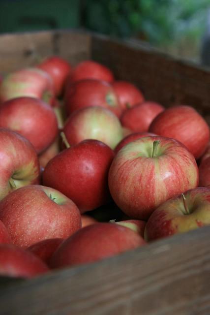 Pommes 02