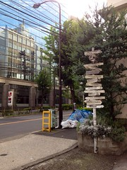 朝散歩 (2012/9/6)