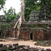 Angkor - Ta Prohm Panoramic by NOAC_