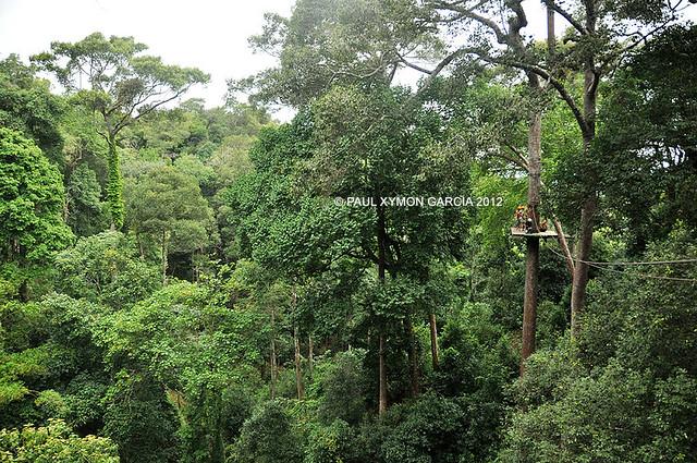 Jungle Flight Chiang Mai Zipline, Thailand