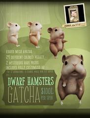 Dwarf Hamster Gacha Promo Poster