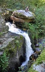La Cascade des Jarrauds à la fin de l' Été