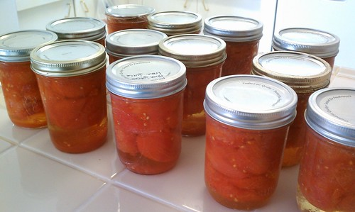 Tomatoes canned in their own juice