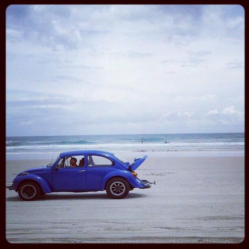 beachbug