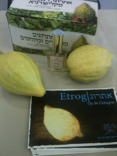 Etrog display