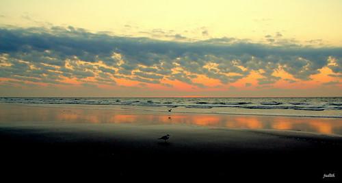 ocean sea beach nature clouds sunrise reflections newjersey wildwood