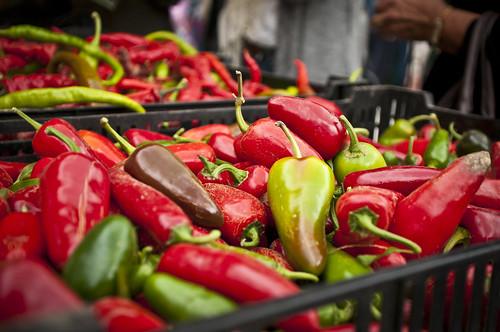 2012 20th annual Chile Pepper Fiesta