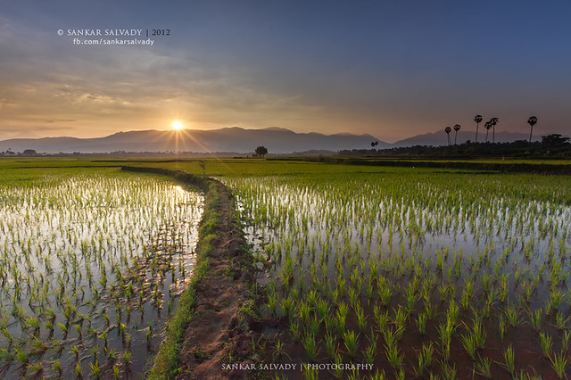 Sunset in rural India (Explore)