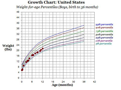 growth chart 12 months -weight