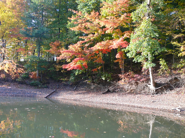 alum creek dating Chat, make new friends and date in alum creek ilikeyou is a great place to meet men and women in alum creek if you're looking for a person to chat with or free dating in alum.